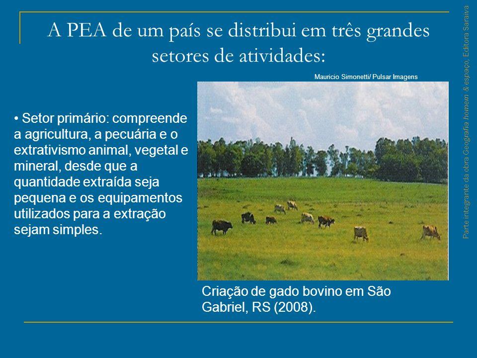 Parte integrante da obra Geografia homem & espaço, Editora Saraiva Fábrica de calçados em Ivoti, RS (2008).