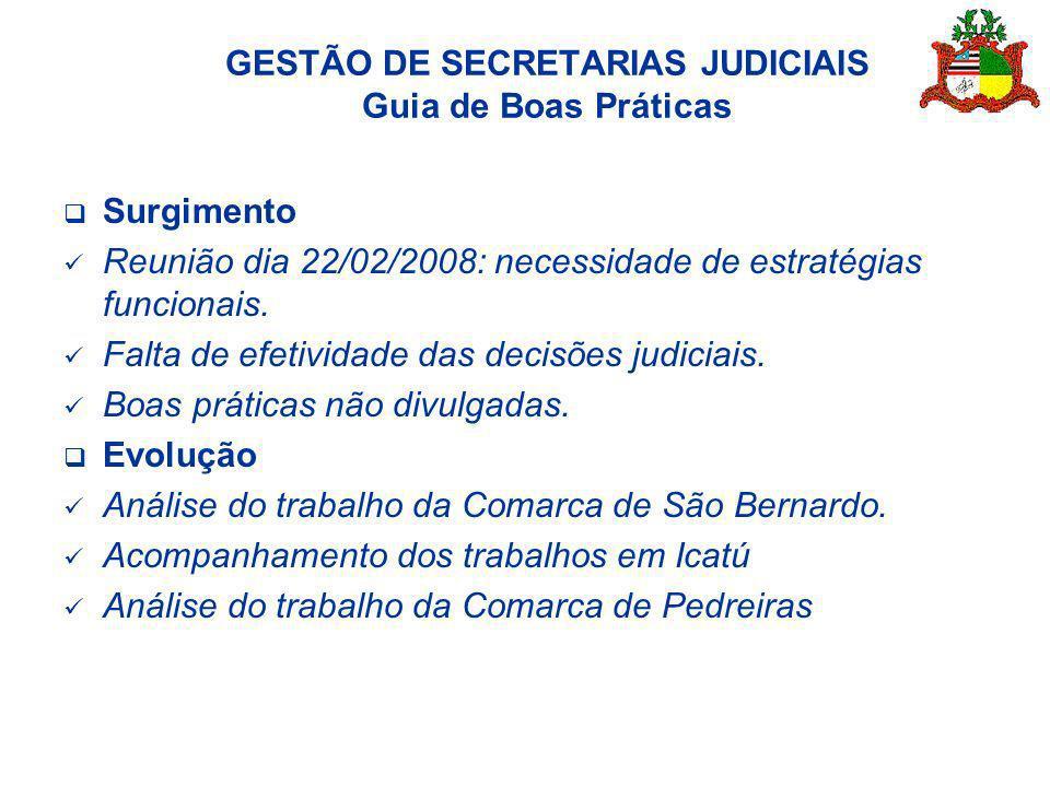 Surgimento Reunião dia 22/02/2008: necessidade de estratégias funcionais. Falta de efetividade das decisões judiciais. Boas práticas não divulgadas. E