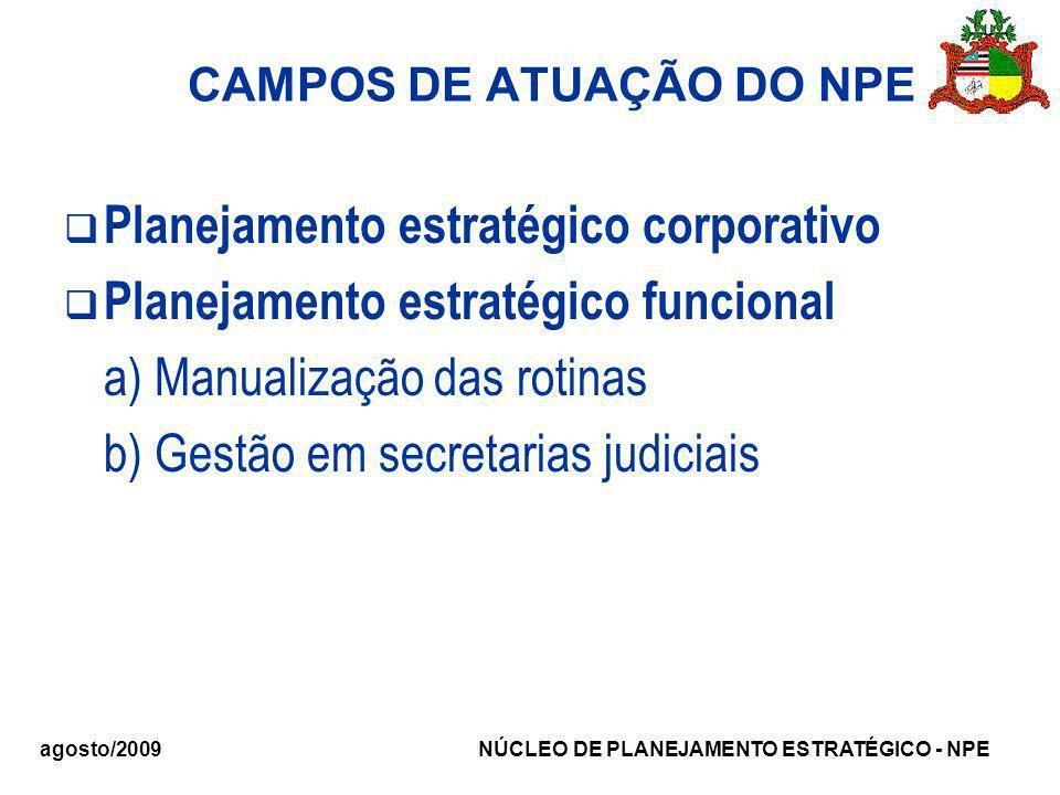 agosto/2009 NÚCLEO DE PLANEJAMENTO ESTRATÉGICO - NPE CAMPOS DE ATUAÇÃO DO NPE Planejamento estratégico corporativo Planejamento estratégico funcional