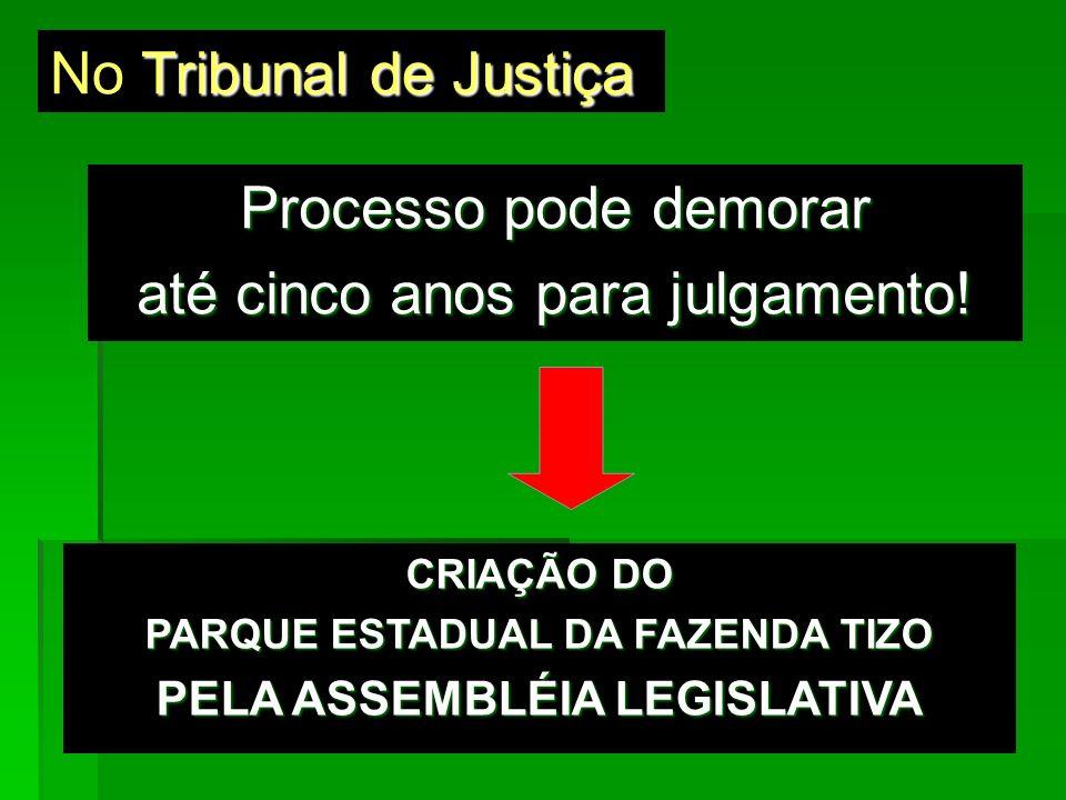Tribunal de Justiça No Tribunal de Justiça Processo pode demorar até cinco anos para julgamento! CRIAÇÃO DO PARQUE ESTADUAL DA FAZENDA TIZO PELA ASSEM