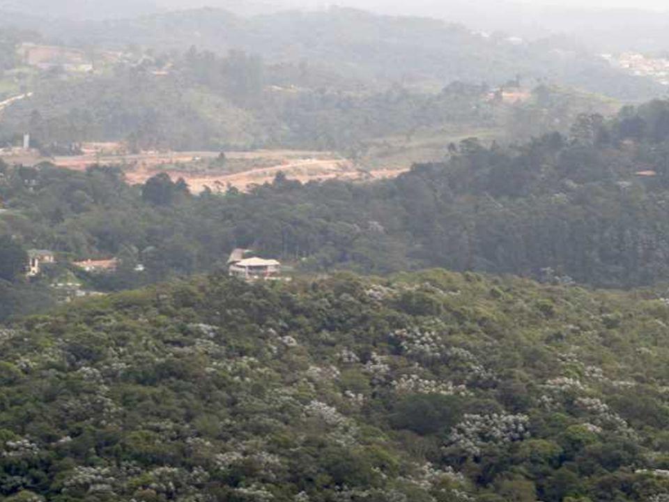 Fazenda Tizo Propriedade da CDHU Fazenda Tizo Propriedade da CDHU 1.545.355,40 m2 Adquirida em 2001 R$ 10.000.000,00 R$ 6,00 o m2