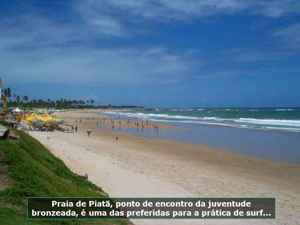 O Parque Pituaçú é uma das mais importantes áreas de preservação ambiental e lazer de Salvador, oferecendo aos visitantes momentos de relaxamento e pr