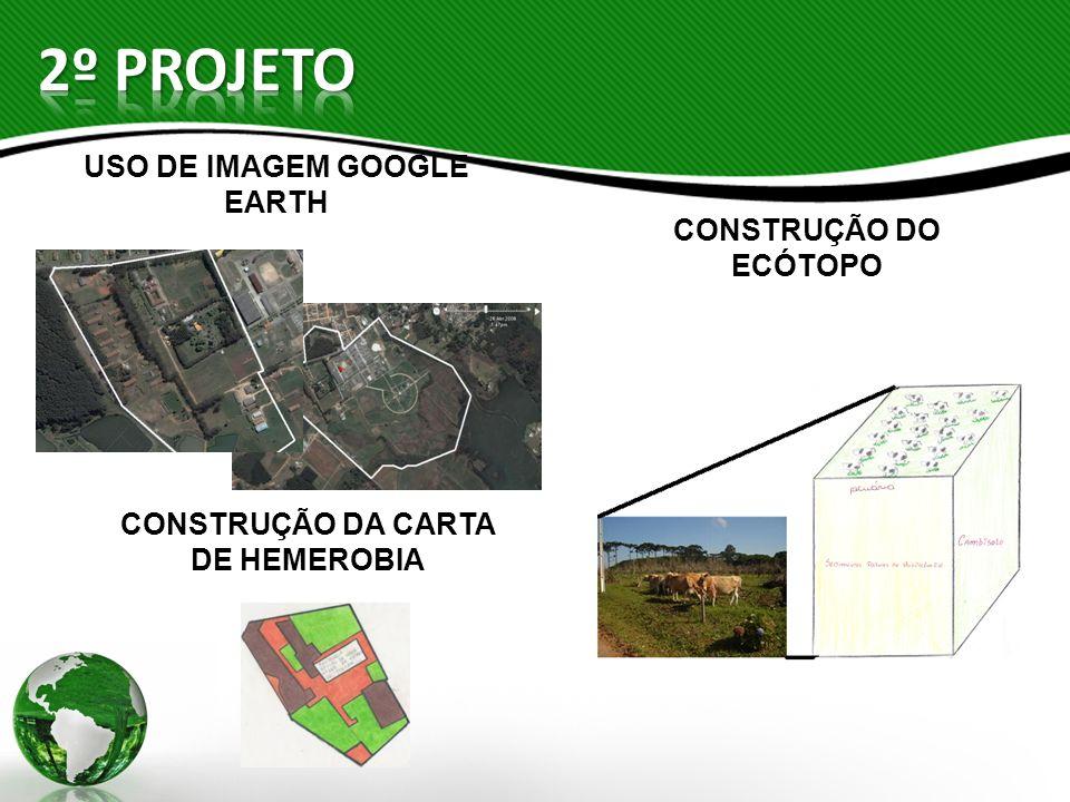 CONSTRUÇÃO DA CARTA DE HEMEROBIA USO DE IMAGEM GOOGLE EARTH CONSTRUÇÃO DO ECÓTOPO