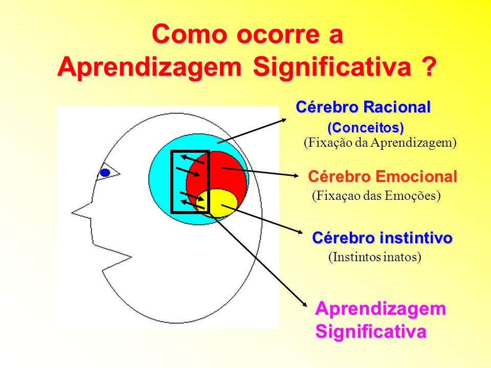 Cérebro instintivo Cérebro Emocional Cérebro Racional (Conceitos) (Conceitos) (Fixação da Aprendizagem) (Fixaçao das Emoções) (Instintos inatos) Aprendizagem Significativa Como ocorre a Aprendizagem Significativa ?