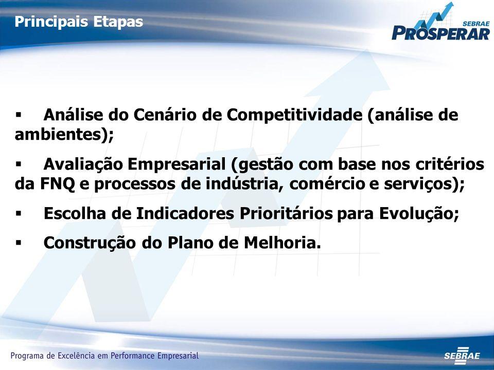 Principais Etapas Análise do Cenário de Competitividade (análise de ambientes); Avaliação Empresarial (gestão com base nos critérios da FNQ e processos de indústria, comércio e serviços); Escolha de Indicadores Prioritários para Evolução; Construção do Plano de Melhoria.