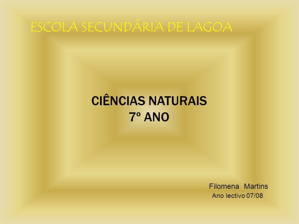 ESCOLA SECUNDÁRIA DE LAGOA CIÊNCIAS NATURAIS 7º ANO Filomena Martins Ano lectivo 07/08