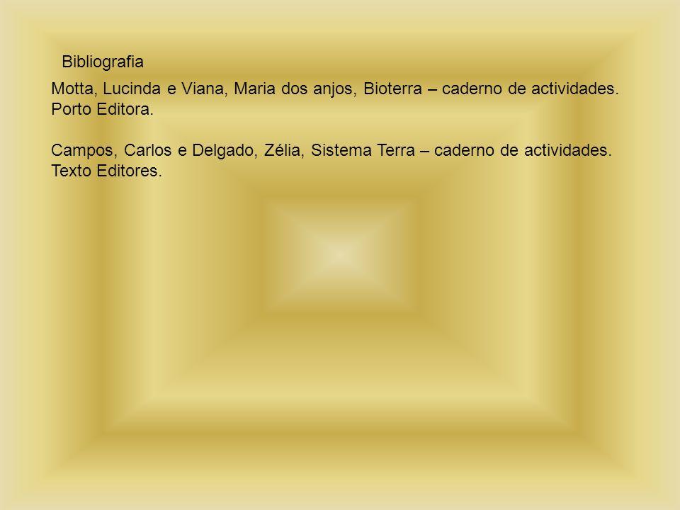 Bibliografia Motta, Lucinda e Viana, Maria dos anjos, Bioterra – caderno de actividades. Porto Editora. Campos, Carlos e Delgado, Zélia, Sistema Terra