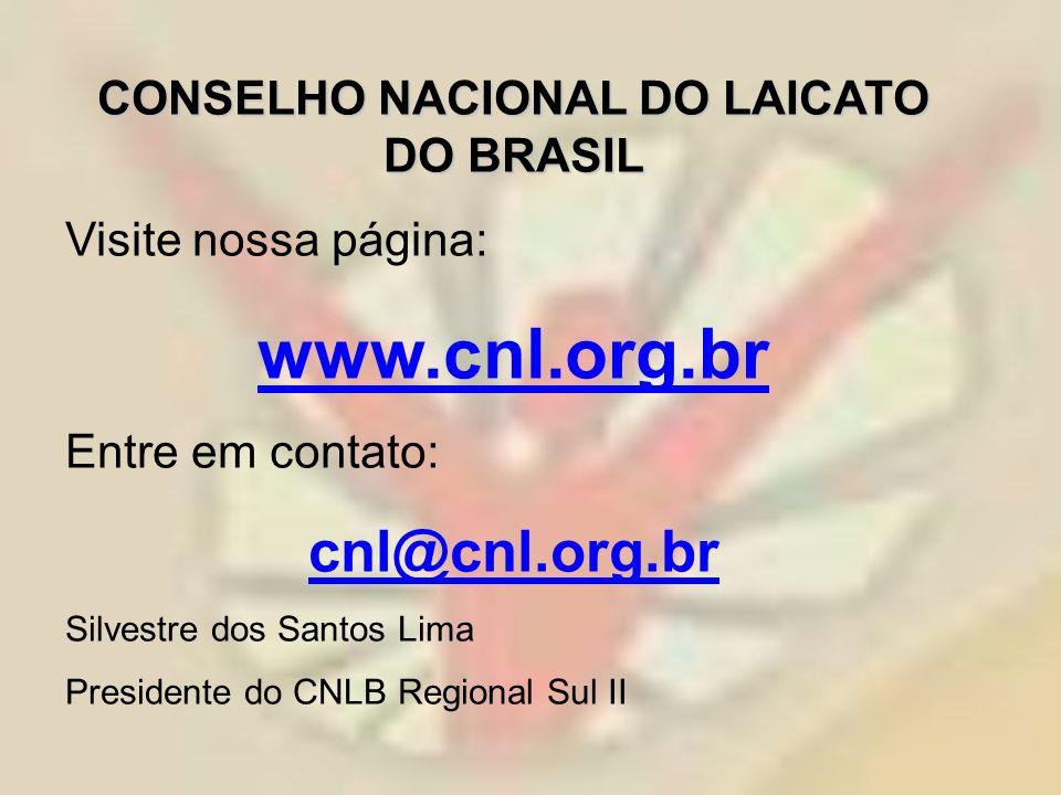 CONSELHO NACIONAL DO LAICATO DO BRASIL Visite nossa página: www.cnl.org.br Entre em contato: cnl@cnl.org.br Silvestre dos Santos Lima Presidente do CN