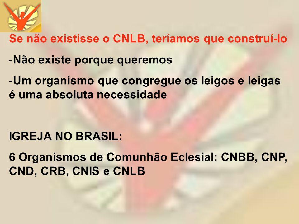 Se não existisse o CNLB, teríamos que construí-lo -Não existe porque queremos -Um organismo que congregue os leigos e leigas é uma absoluta necessidad