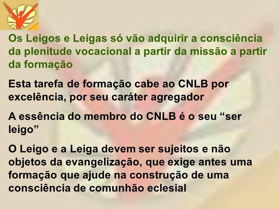 CONSELHO NACIONAL DO LAICATO DO BRASIL Visite nossa página: www.cnl.org.br Entre em contato: cnl@cnl.org.br Silvestre dos Santos Lima Presidente do CNLB Regional Sul II