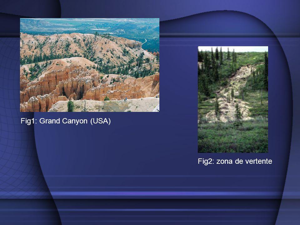 Fig1: Grand Canyon (USA) Fig2: zona de vertente