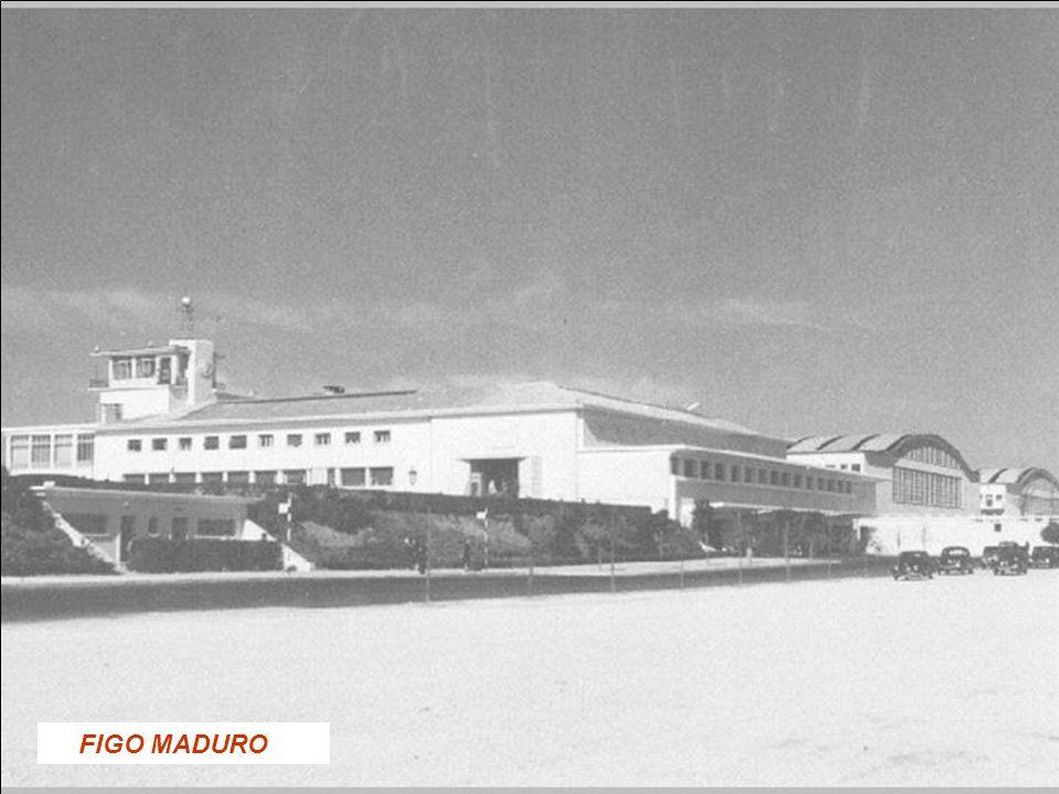 FIGO MADURO