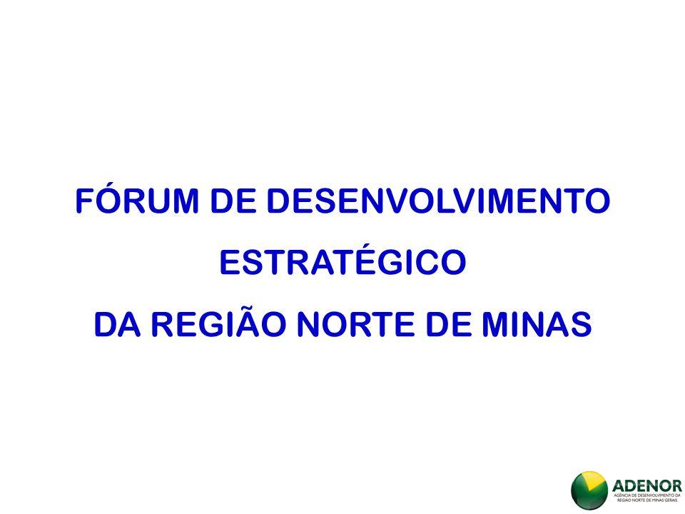 FÓRUM DE DESENVOLVIMENTO ESTRATÉGICO DA REGIÃO NORTE DE MINAS