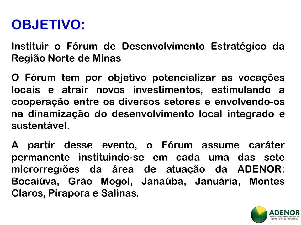 MISSÃO ADENOR: Contribuir para a aceleração do desenvolvimento econômico sustentável da Região Norte de Minas Gerais.