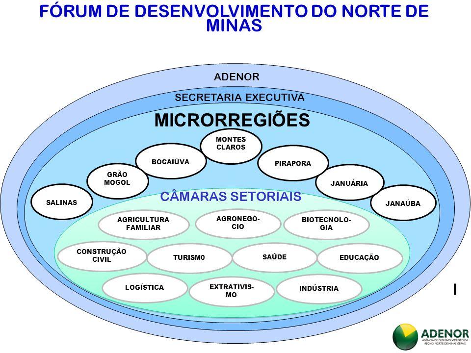 ADENOR SECRETARIA EXECUTIVA MICRORREGIÕES I MONTES CLAROS BOCAIÚVA GRÃO MOGOL SALINAS JANAÚBA JANUÁRIA PIRAPORA AGRICULTURA FAMILIAR AGRONEGÓ- CIO BIOTECNOLO- GIA CONSTRUÇÃO CIVIL TURISM0 SAÚDE EDUCAÇÃO LOGÍSTICA EXTRATIVIS- MO INDÚSTRIA CÂMARAS SETORIAIS FÓRUM DE DESENVOLVIMENTO DO NORTE DE MINAS