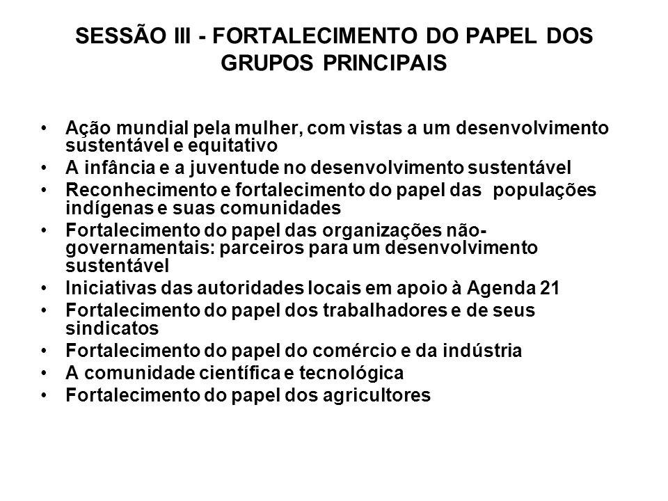SESSÃO III - FORTALECIMENTO DO PAPEL DOS GRUPOS PRINCIPAIS Ação mundial pela mulher, com vistas a um desenvolvimento sustentável e equitativo A infânc