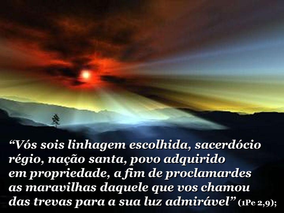 Vós sois linhagem escolhida, sacerdócio régio, nação santa, povo adquirido em propriedade, a fim de proclamardes as maravilhas daquele que vos chamou das trevas para a sua luz admirável (1Pe 2,9);