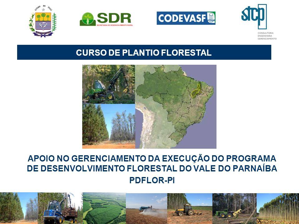 CURSO DE PLANTIO FLORESTAL APOIO NO GERENCIAMENTO DA EXECUÇÃO DO PROGRAMA DE DESENVOLVIMENTO FLORESTAL DO VALE DO PARNAÍBA PDFLOR-PI