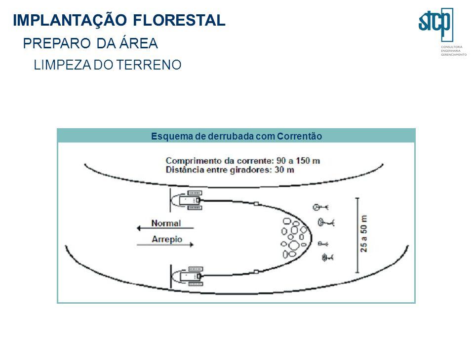 IMPLANTAÇÃO FLORESTAL PREPARO DA ÁREA LIMPEZA DO TERRENO Esquema de derrubada com Correntão