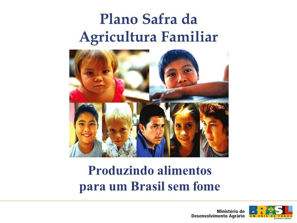 1.Garantia de comercialização dos Assentados da Reforma Agrária 2.Compra antecipada da Agricultura Familiar 3.Compra direta da Agricultura Familiar 2003/2004: R$ 900 milhões ; Programa de compras da agricultura familiar