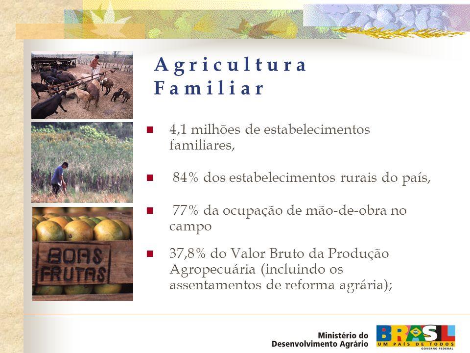 84% da mandioca, 67% do feijão, 54% do leite, 49% do milho, 40% de aves e ovos, 58% dos suínos Agricultura Familiar Responsável pela produção dos principais alimentos consumidos pela população: