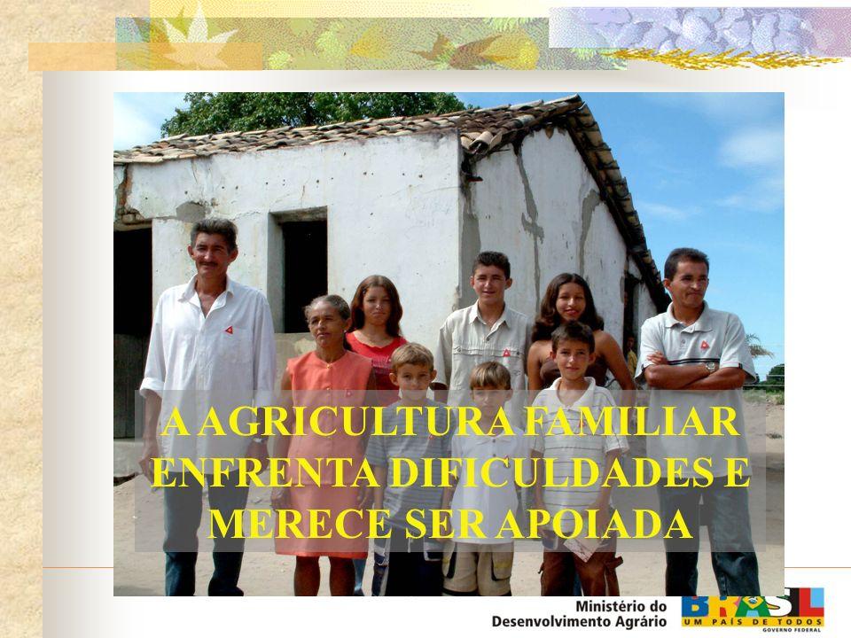 Agricultura Familiar 36,8% das famílias rurais ou 15 milhões de pessoas - estão em situação de indigência, conforme o Projeto Fome Zero; A renda média mensal da população ocupada no meio rural era de R$ 138,00 contra R$ 355,00 no meio urbano em 1999.