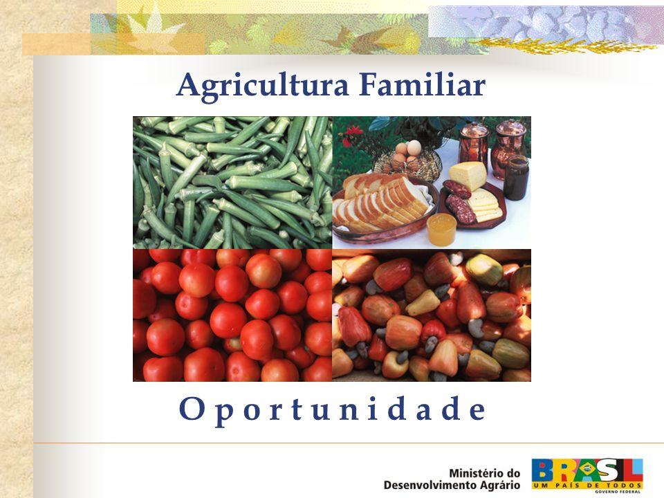 Oportunidades Programa Fome Zero: aumento de mais de 24% no consumo de feijão, 24% no leite e 28% no trigo, entre outros exemplos, com a inclusão de 44 milhões de pessoas no Cartão-Alimentação em 4 anos, demandando mais 3 milhões de hectares de área produtiva (CNA e OCB).