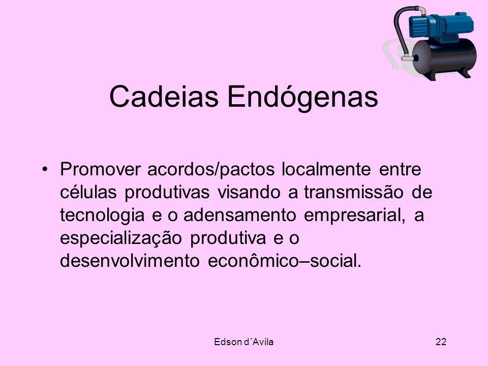 Edson d´Avila22 Cadeias Endógenas Promover acordos/pactos localmente entre células produtivas visando a transmissão de tecnologia e o adensamento empr
