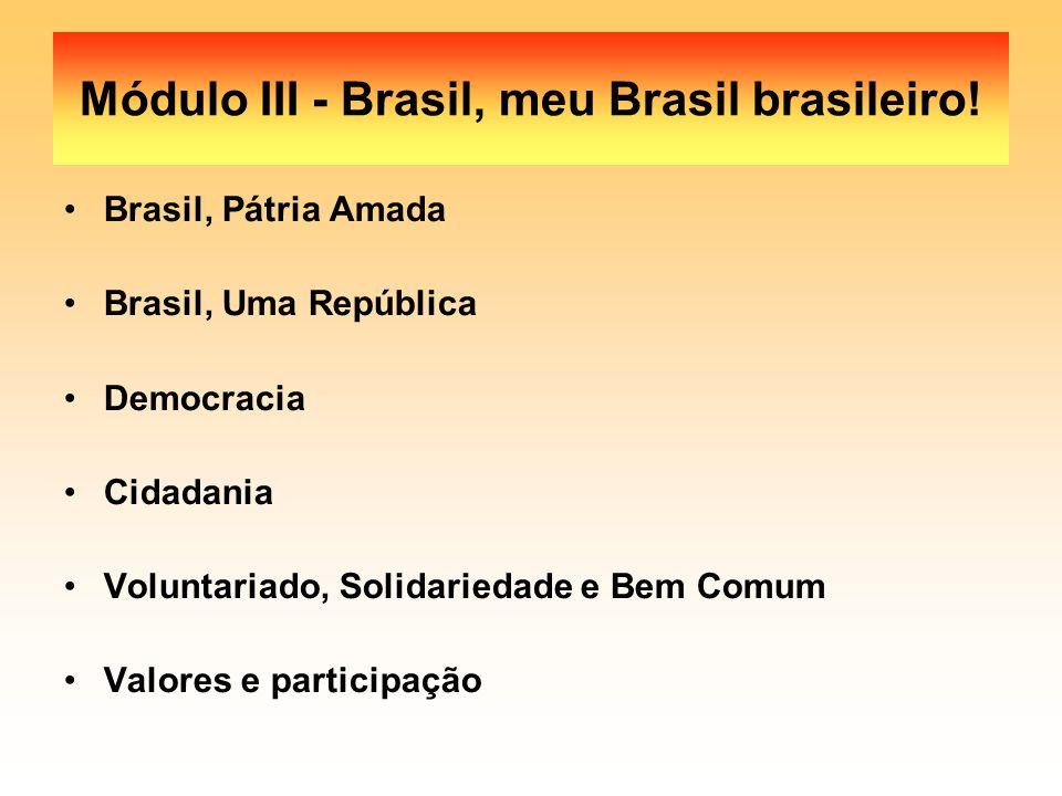 Módulo III - Brasil, meu Brasil brasileiro! Brasil, Pátria Amada Brasil, Uma República Democracia Cidadania Voluntariado, Solidariedade e Bem Comum Va