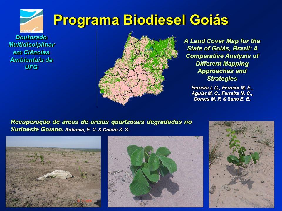Programa Biodiesel Goiás Recuperação de áreas de areias quartzosas degradadas no Sudoeste Goiano. Antunes, E. C. & Castro S. S. A Land Cover Map for t