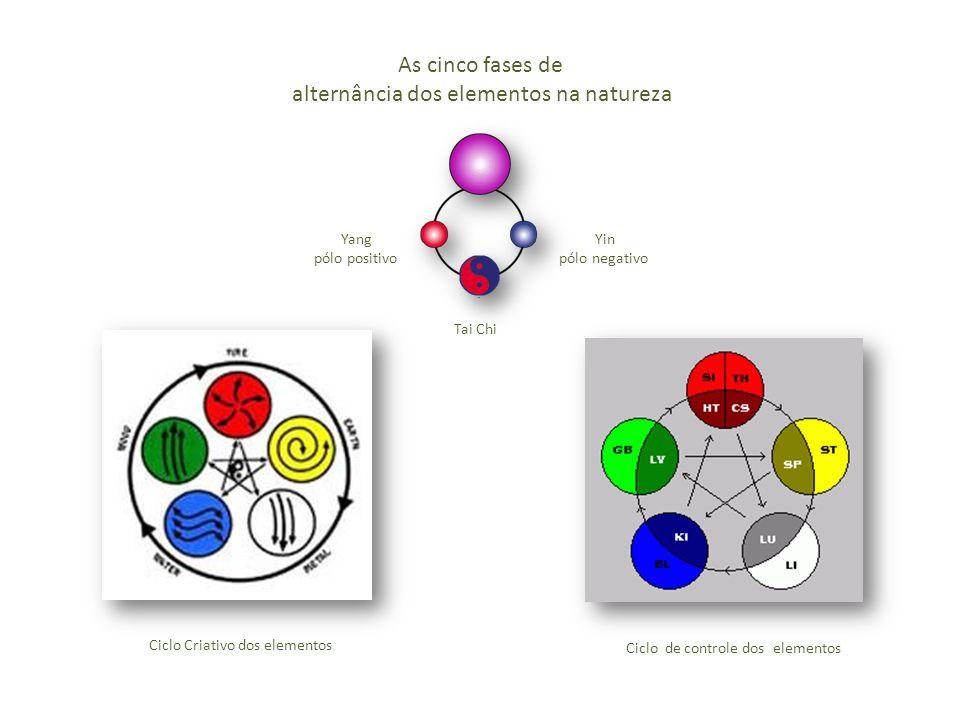 As cinco fases de alternância dos elementos na natureza Yin pólo negativo Yang pólo positivo Tai Chi Ciclo Criativo dos elementos Ciclo de controle dos elementos