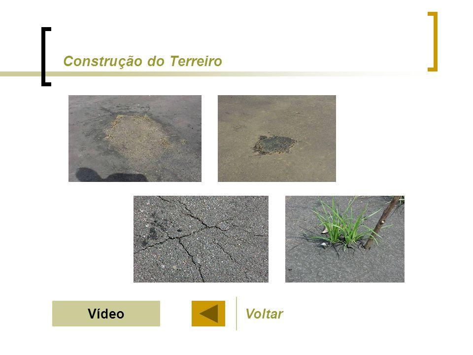 Voltar Verificar o sistema de drenagem Evitar terreiro de terra
