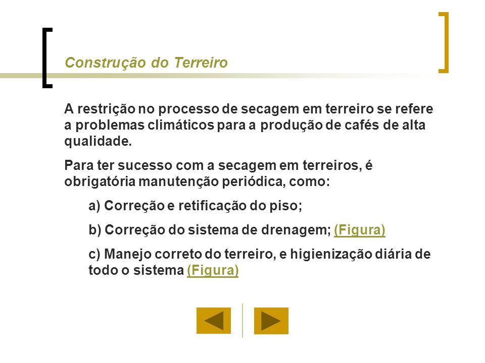 O terreiro deve ser calculado em função da produção média por mil pés, o número de pés de café e as condições climáticas da propriedade.