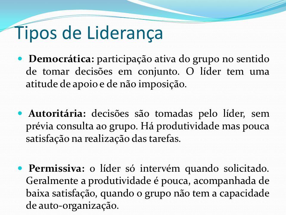 Tipos de Liderança Democrática: participação ativa do grupo no sentido de tomar decisões em conjunto.