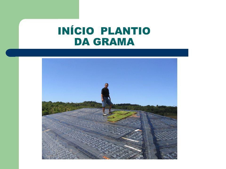 INÍCIO PLANTIO DA GRAMA