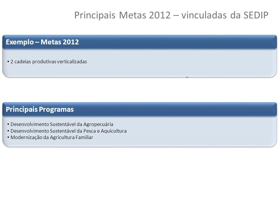 50 Copyright © 2010 Symnetics – Todos os direitos reservados Principais Metas 2012 – vinculadas da SEDIP Principais realizações Valorização do Servido