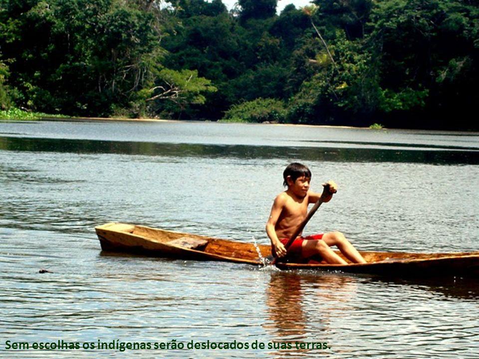 Sem escolhas os indígenas serão deslocados de suas terras.