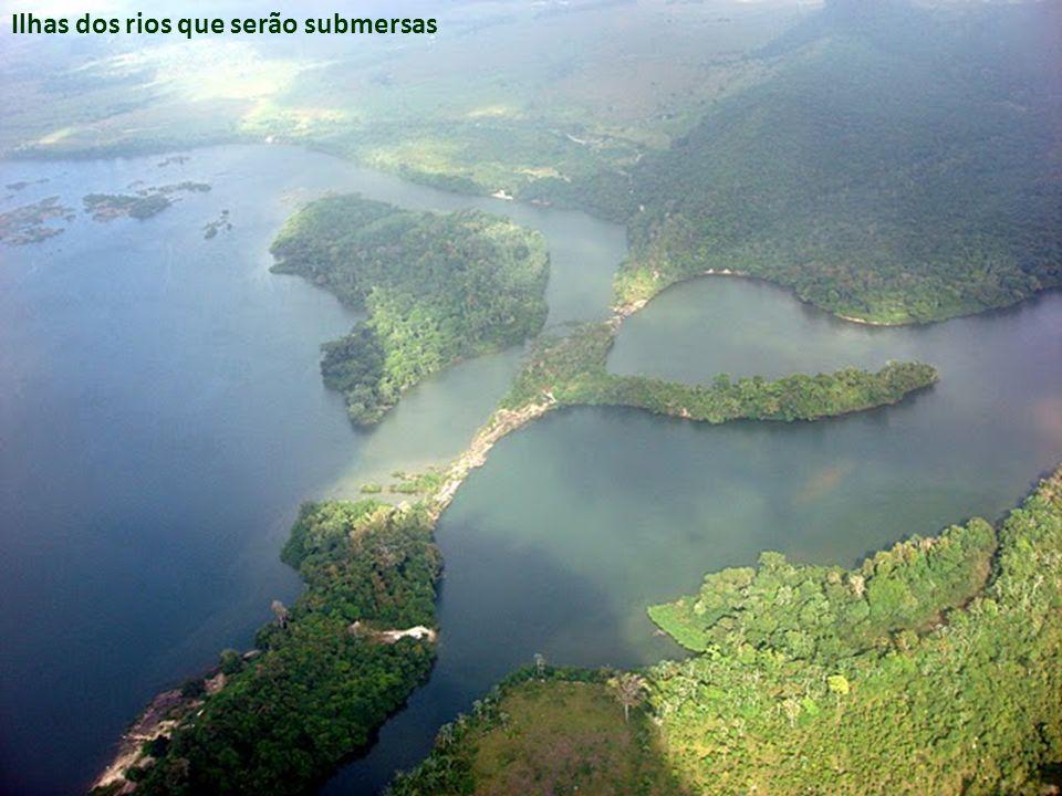 A construção da Hidroelétrica de Belo Monte é a ostentação da imoralidade e desrespeito ao meio ambiente proveniente dum capitalismo insustentável e selvagem.