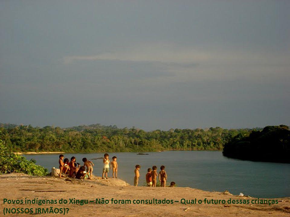 Povos indígenas do Xingu – Não foram consultados – Qual o futuro dessas crianças (NOSSOS IRMÃOS)?