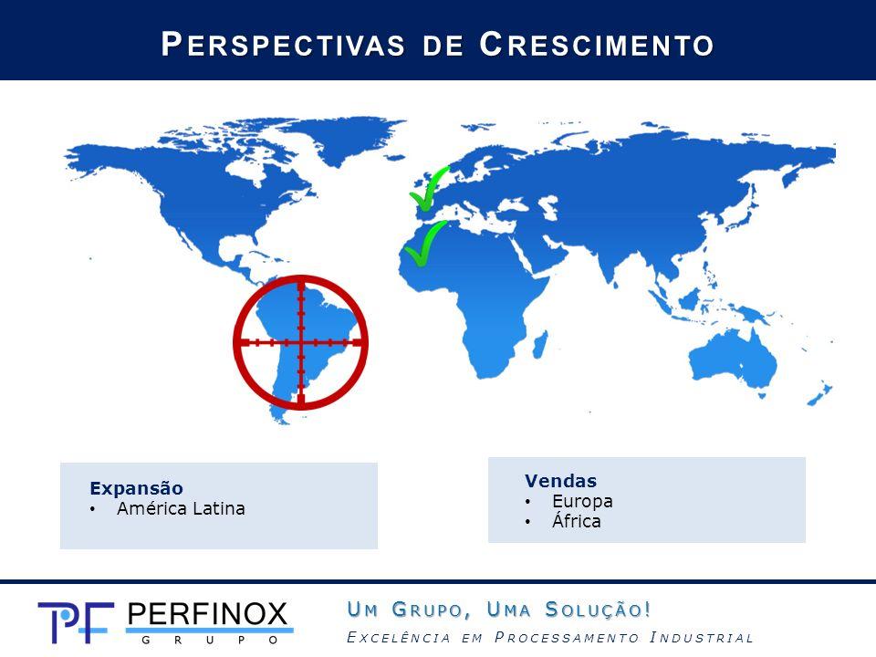 Expansão América Latina P ERSPECTIVAS DE C RESCIMENTO Vendas Europa África U M G RUPO, U MA S OLUÇÃO ! E XCELÊNCIA EM P ROCESSAMENTO I NDUSTRIAL