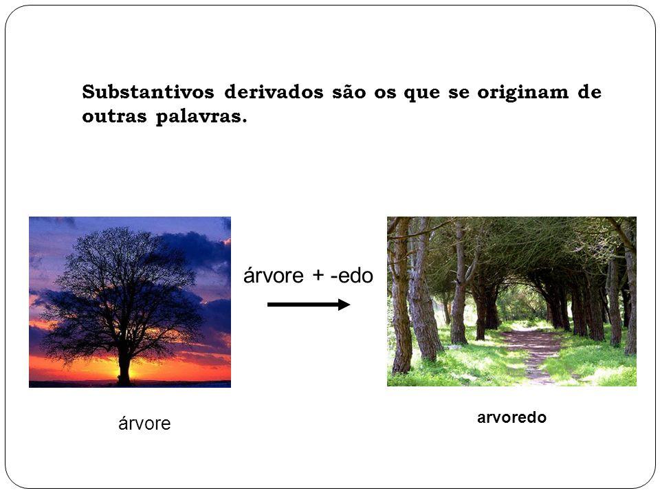árvore arvoredo Substantivos derivados são os que se originam de outras palavras. árvore + -edo
