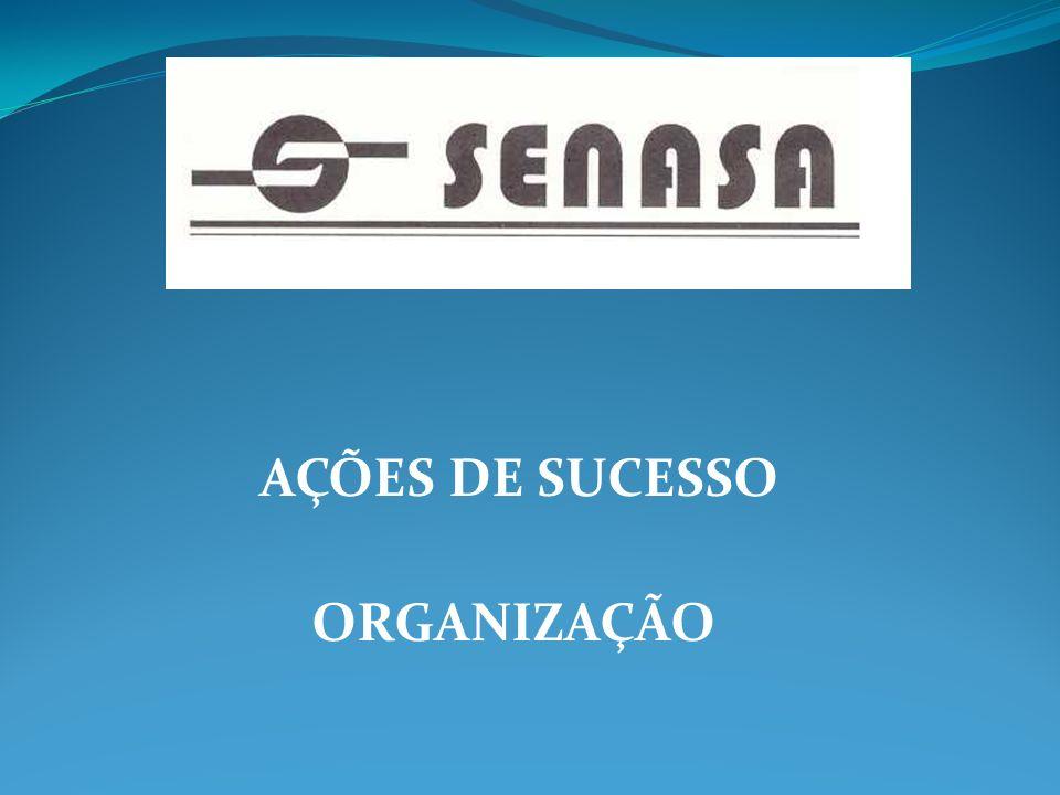 AÇÕES DE SUCESSO ORGANIZAÇÃO