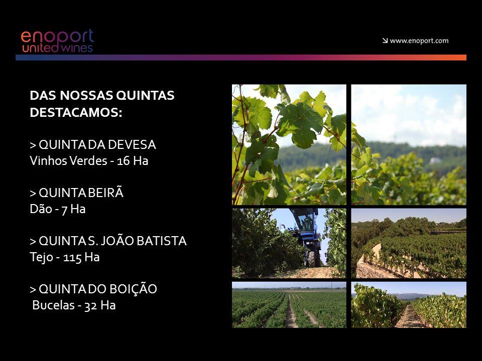 DAS NOSSAS QUINTAS DESTACAMOS: > QUINTA DA DEVESA Vinhos Verdes - 16 Ha > QUINTA BEIRÃ Dão - 7 Ha > QUINTA S.