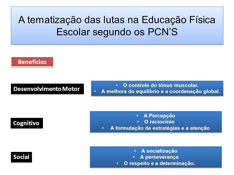 A tematização das lutas na Educação Física Escolar segundo os PCNS Benefícios Desenvolvimento Motor Cognitivo Social O controle do tônus muscular. A m