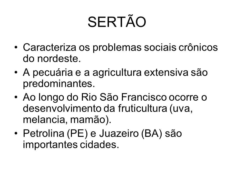 SERTÃO Caracteriza os problemas sociais crônicos do nordeste. A pecuária e a agricultura extensiva são predominantes. Ao longo do Rio São Francisco oc