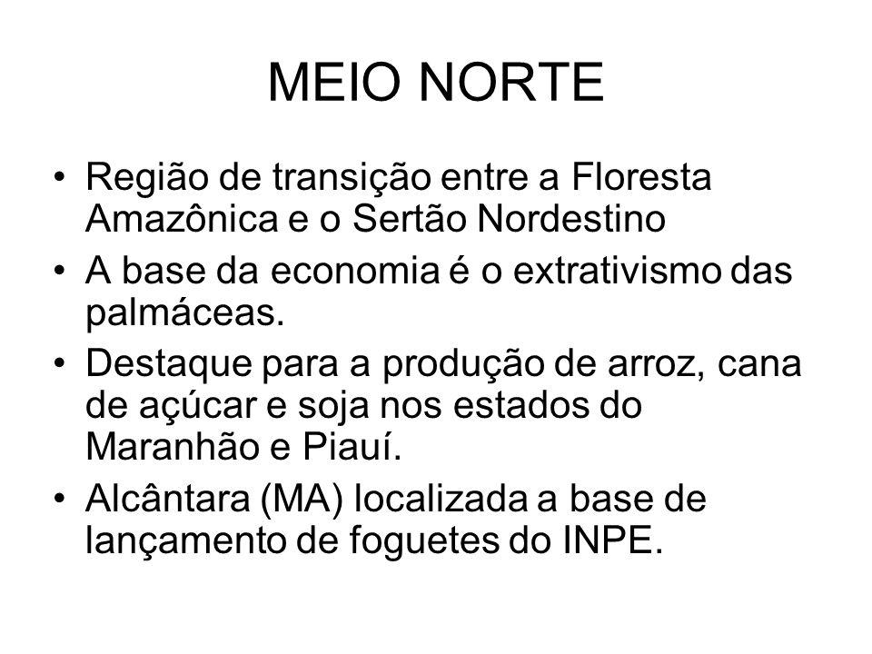 MEIO NORTE Região de transição entre a Floresta Amazônica e o Sertão Nordestino A base da economia é o extrativismo das palmáceas. Destaque para a pro