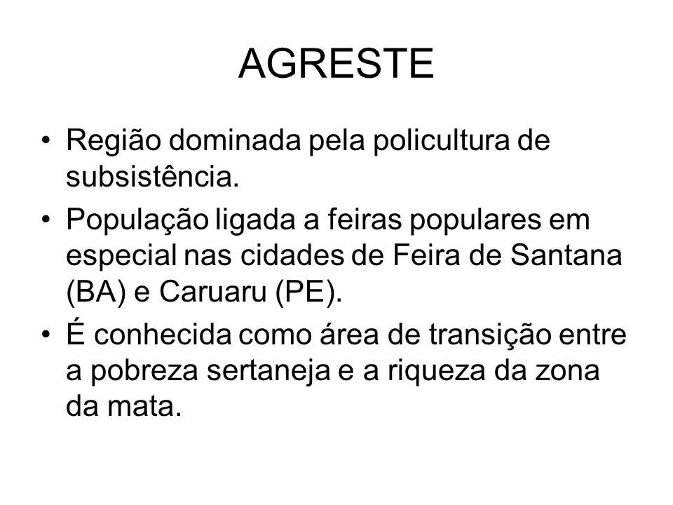 AGRESTE Região dominada pela policultura de subsistência. População ligada a feiras populares em especial nas cidades de Feira de Santana (BA) e Carua