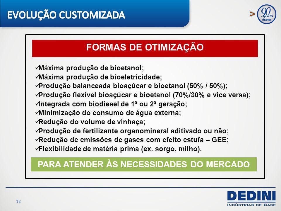 18 FORMAS DE OTIMIZAÇÃO Máxima produção de bioetanol; Máxima produção de bioeletricidade; Produção balanceada bioaçúcar e bioetanol (50% / 50%); Produ