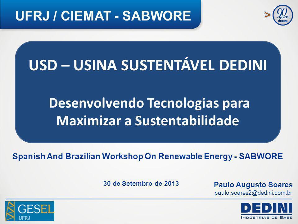 2 USD – USINA SUSTENTÁVEL DEDINI Desenvolvendo Tecnologias para Maximizar a Sustentabilidade UFRJ / CIEMAT - SABWORE Paulo Augusto Soares paulo.soares