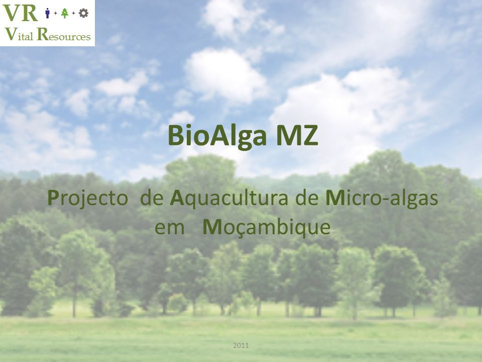BioAlga MZ Projecto de Aquacultura de Micro-algas em Moçambique 2011